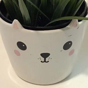 Planter Dog face